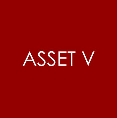 Asset V Yacht Management