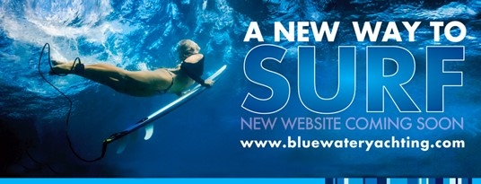 Image forBluewater boosts its global brand