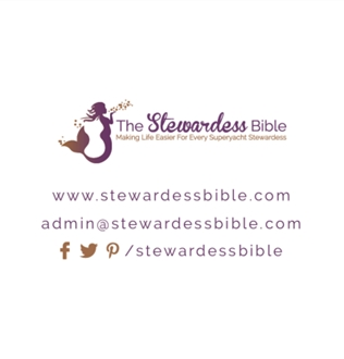 The Stewardess Bible Available in Print image